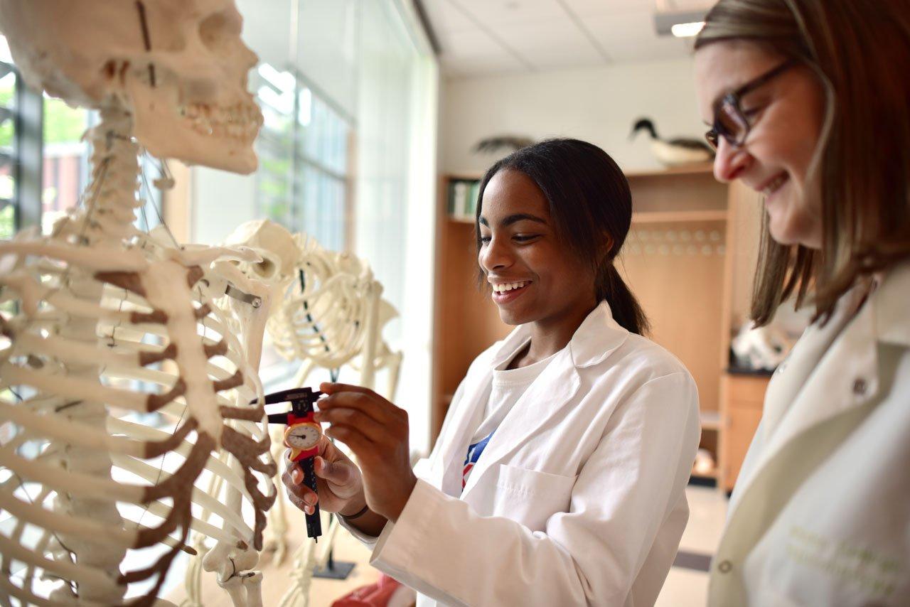 Biology and Anatomy Study